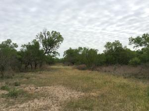 Yancey Ranch - 243 Acres